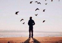 Вопрос: Создает ли Аллах людей плохими и хорошими?