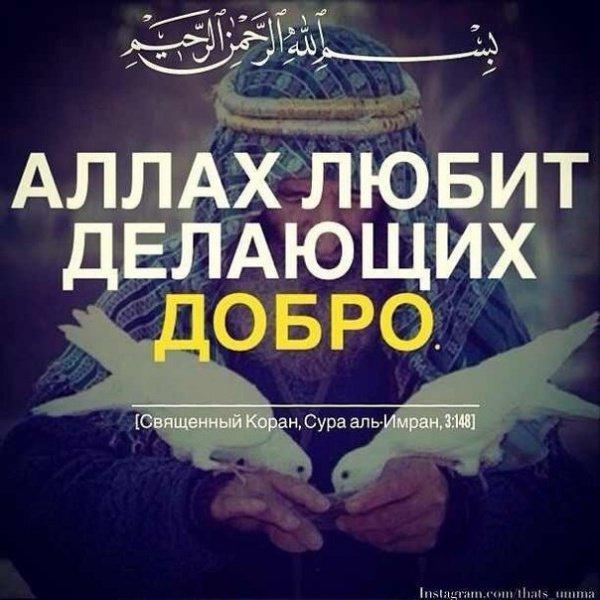 Красивые статусы про ислам