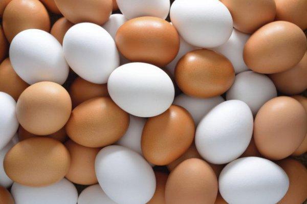 Могут ли куриные яйца быть не халяль?