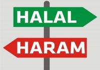 Халяль и харам: а есть ли у нас выбор?