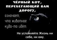 Что необходимо знать о суевериях?