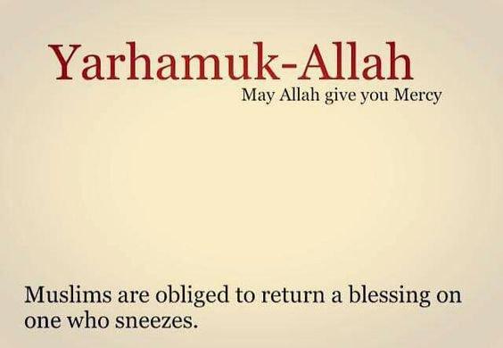 Пророк (да благословит его Аллах и приветствует) сказал: «Если кто-то чихнет во время разговора, значит он говорит правду»
