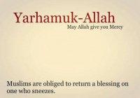 """Говори чихнувшему """"Йархамукаллах"""" («Да смилуется над тобой Аллах!»)"""