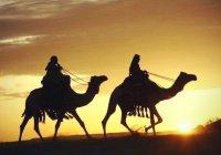 Сахабы - сподвижники Пророка