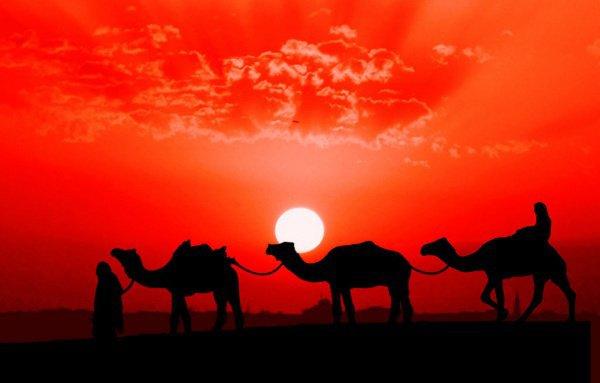 Золотая страница исламской истории