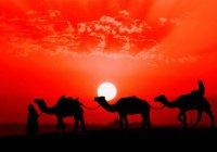 Абу Бакр ас-Сыддик – первый праведный халиф