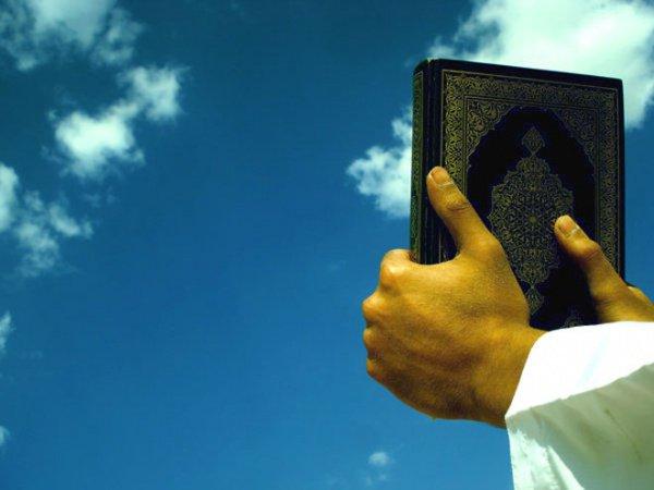 Знамения Аллаха можно увидеть даже в самых, казалось бы, обыденных вещах.
