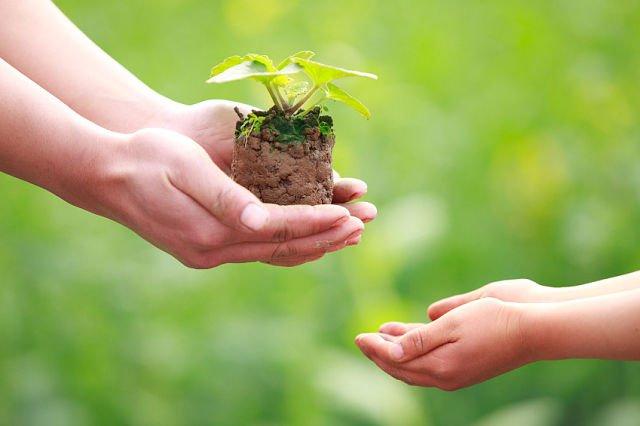 Вакф - это имущество, отданное на религиозные или благотворительные цели.