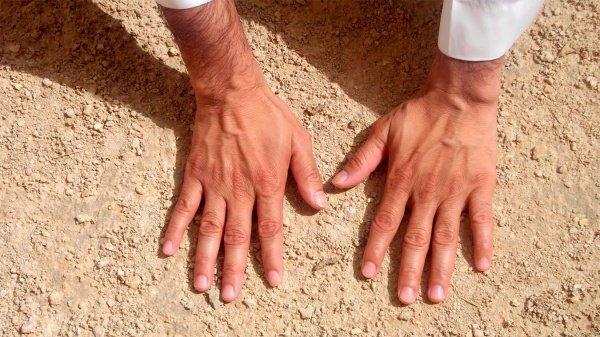 Можно ли брать таяммум, используя пыль с пола или ковра?