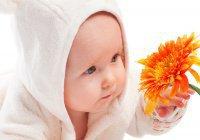 В каком возрасте следует делать обрезание (хитан) ребенку?