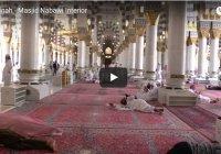 Видео дня: пройдите по коридорам мечети Пророка (ﷺ) в Медине
