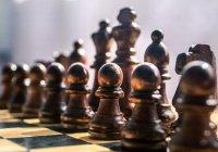 Можно ли играть в шахматы с точки зрения Ислама?