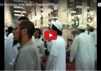 Побывайте в мечети Пророка (ﷺ) в месяц Рамадан