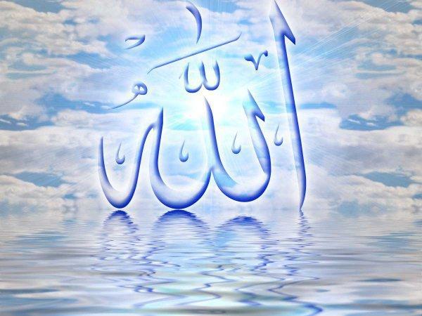 Что имеется в виду под понятием ни'мат Аллаха Та'аля?