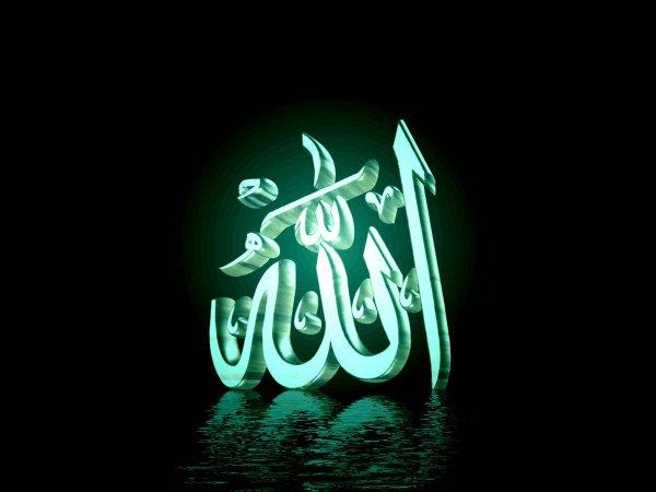 Всевышний Аллах любит нас!