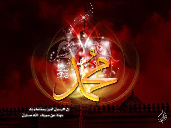 Что было запрещено Посланнику Аллаха (ﷺ), но разрешено простым мусульманам?