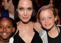Приемная дочь Анджелины Джоли хочет вернуться к родной маме
