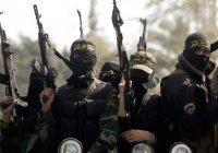Аль-Каида, ИГ и Талибан начнут мировую войну с Индии