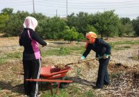 Мусульманки Техаса 10 лет готовят детей-волонтеров