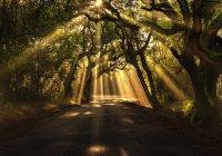 6 чудес пророка Исы (мир ему)