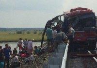 Предполагаемый виновник ДТП с автобусами под Хабаровском задержан