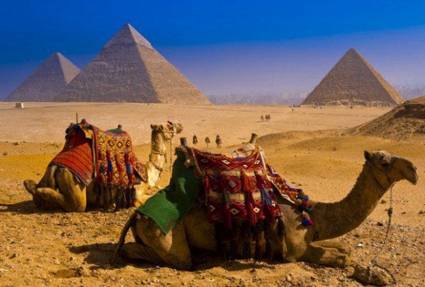 Россия и Египет: 4 новых договора