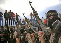 Иракский комик превратил ИГ в клоунов