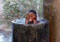 В Египте жара убила 40 человек
