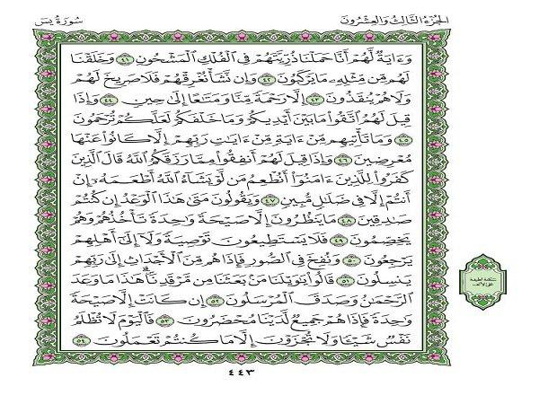 матрасы ясин сура текст читать на арабском для расчета необходимого