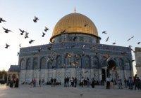 Синагога появится рядом с мечетью Аль-Акса