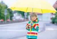 На выходных в Казани сохранится нежаркая погода