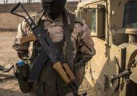 В Ираке за сутки ликвидировано 120 террористов ИГ