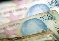 Турецкая лира упала до исторического минимума