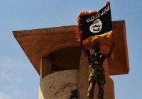 «Исламское государство» пугает захватом Стамбула