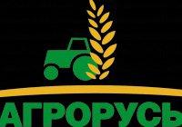 Жители Санкт-Петербурга попробуют татарскую национальную кухню