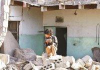 За 5 месяцев Йемен изменился, как Сирия за 5 лет