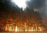 Лесные пожары в Бурятии не повредили жилые дома