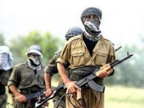 Политологи считают, что Турция вообще не оказывает террористам серьезного сопротивления