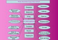 Как привить своим детям верное понимание принципа махрама?