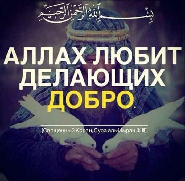 """""""Аллах любит делающих добро"""""""