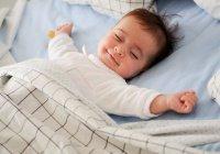 Ученые: мозг человека активно работает даже во сне