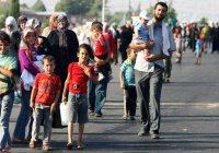 Шевченко предлагает начать принимать сирийских беженцев в России