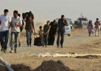 Латвия наотрез отказывается принимать беженцев