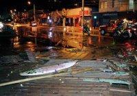 Жертвами землетрясения в Чили стали пять человек
