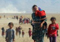 Социолог: деление беженцев по религии усилит радикалов