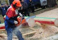Татарстанцы завоевали  второе место на чемпионате среди вальщиков леса