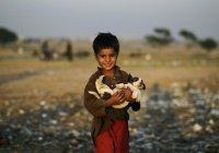 Остров для беженцев назовут в честь утонувшего мальчика