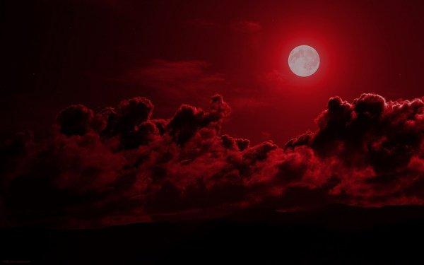 Среди Его знамений – ночь и день, солнце и луна