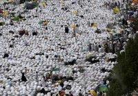 До 770 выросло число жертв давки в Мекке