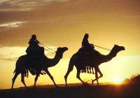 Действительно ли среди сподвижников Пророка (ﷺ) были только арабы?